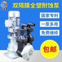 电动耐腐蚀双隔膜泵 立式隔膜计量泵 小型自吸隔膜加药泵